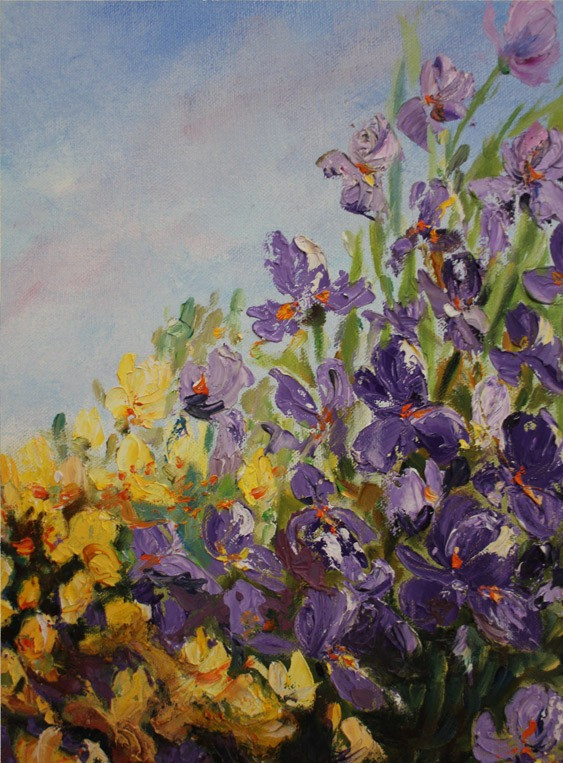 Yellow and Purple Flowers (K105)