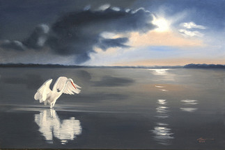 E-144-gw Egret.jpg
