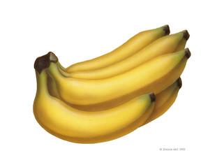 fruit-banana.jpg