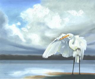 E-120-gw Egret 20x24 .jpg