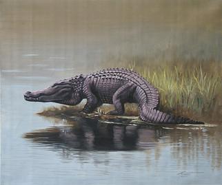A-82-alligator.jpg