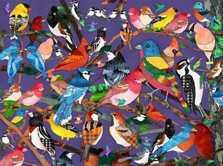 Bird Medley - purple background