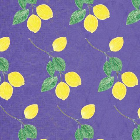 lemon-2P.jpg