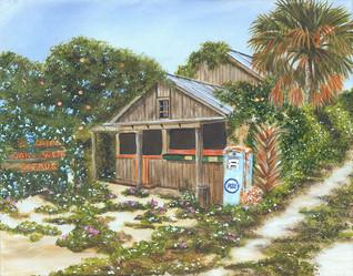 Old Florida Grove