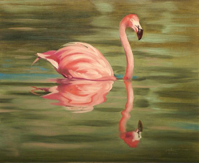 F-40-flamingo.jpg