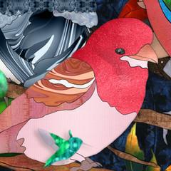 Bird-Medley-Closeup2.jpg