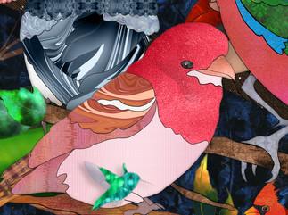 Bird Medley 3 - Purple Finch - Detail