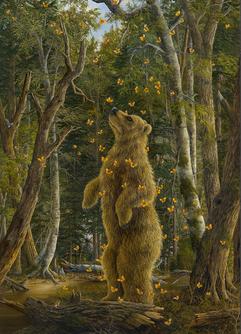 (Bear Collection)