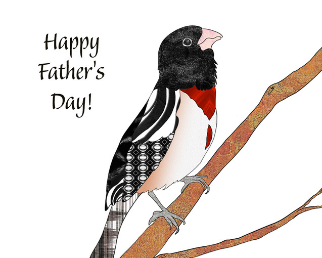 Rosebreasted Grosbeak - Father's Day