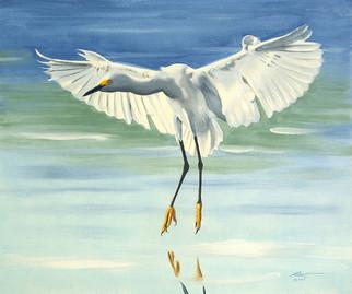 E-110-Snowy Egret.jpg