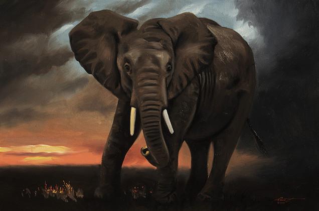 E-161-Elephant.jpg