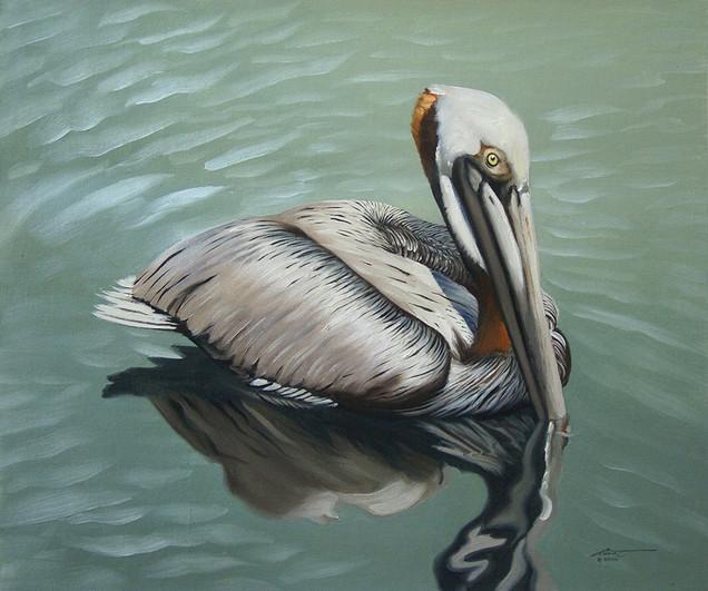 P-25-pelican.jpg