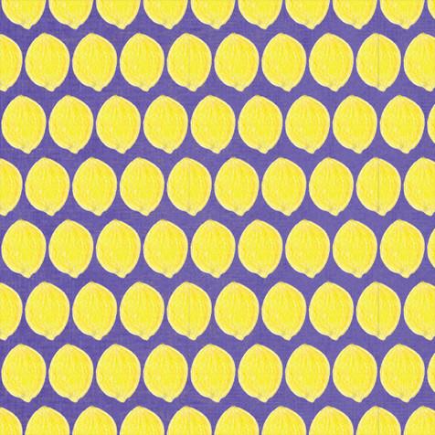 lemon-7P.jpg