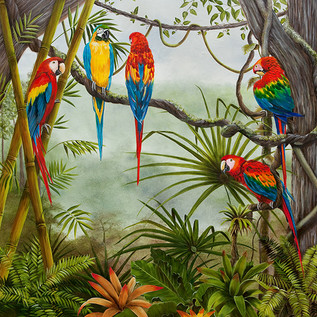 Misty Morning - Parrots in jungle