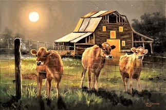 C-102-Cows.jpg
