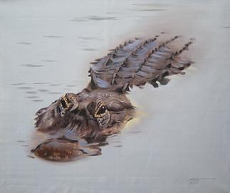 A-84-alligator.jpg