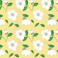 CherryBlossom-1a.jpg