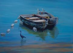 Little Blue Heron Wading.jpg