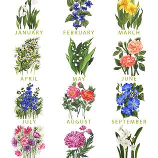 A YEAR IN FLOWERS.jpg