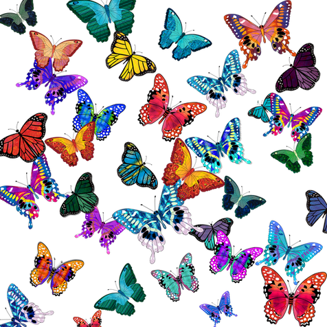 Butterflies (white background)