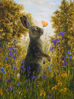 Kiss (Rabbit Collection)
