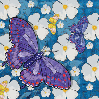 Purple Butterfly with White Flowers BFy-
