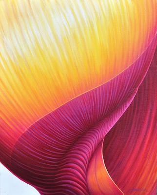 Flamboyant - Seashell