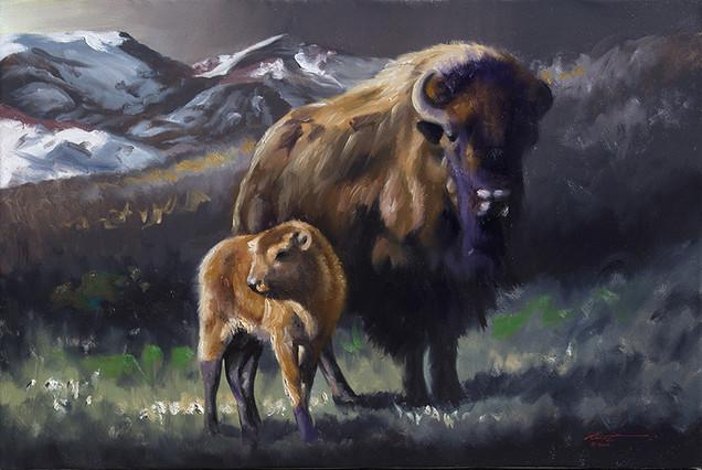 B-88-bison.jpg