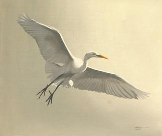 E-122-gw Egret.jpg