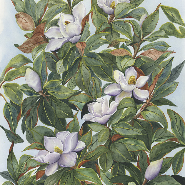 Magnolias and Greenery