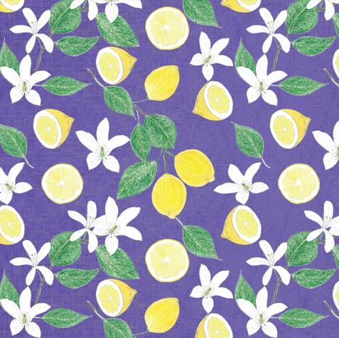 lemon-4-P.jpg