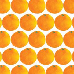 Orange2-b.jpg