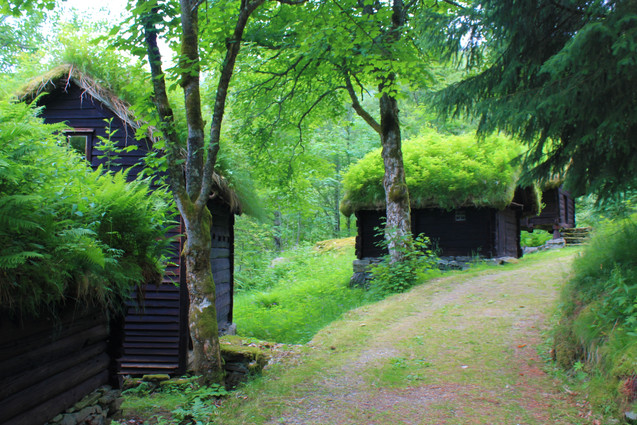 Hobbit Hill-1.jpg