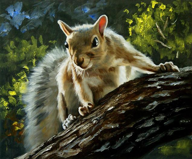 S-67-squirrel.jpg