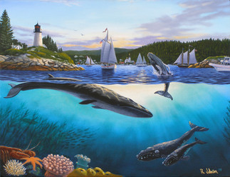 Whales of Maine