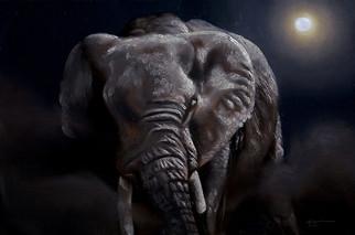 E-149-elephant.jpg