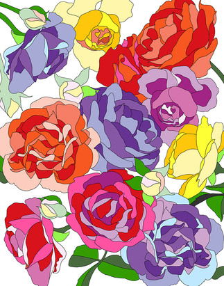 Roses - white background