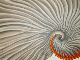 Spiral Out -Seashell