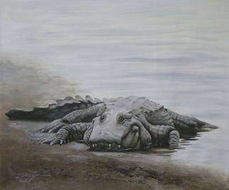 A-69-alligator.jpg