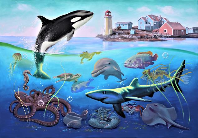 ORCA Peggy's Cove-O-104.jpg