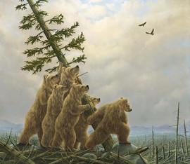 Blowdown! (Bear Collection)