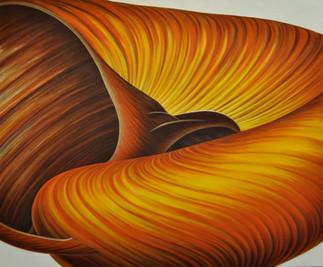 Opulance - Seashell