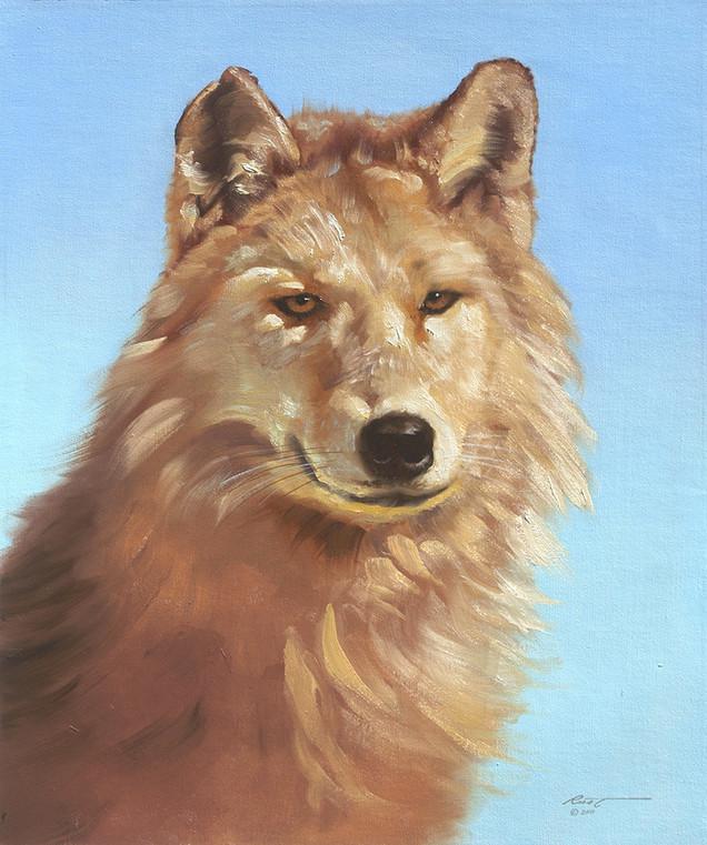 W-5-wolf.jpg