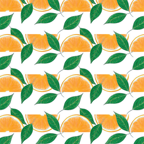 Orange2-e.jpg