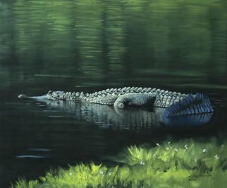 A-80-alligator.jpg