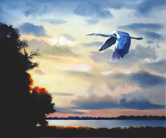 H-73-gb Heron.jpg