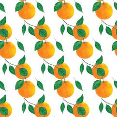Orange2-g.jpg