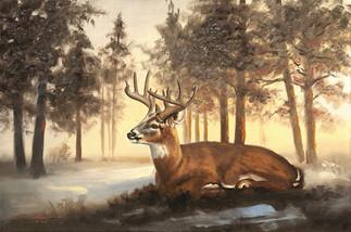 D-144-deer.jpg