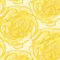 Roses-Y-3Y.jpg