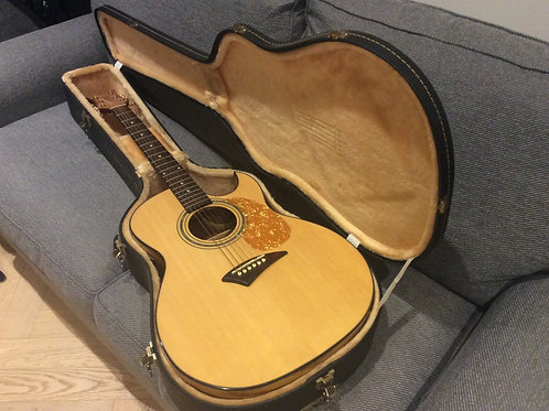 Dean Electro Acoustic Guitar AK48F GN